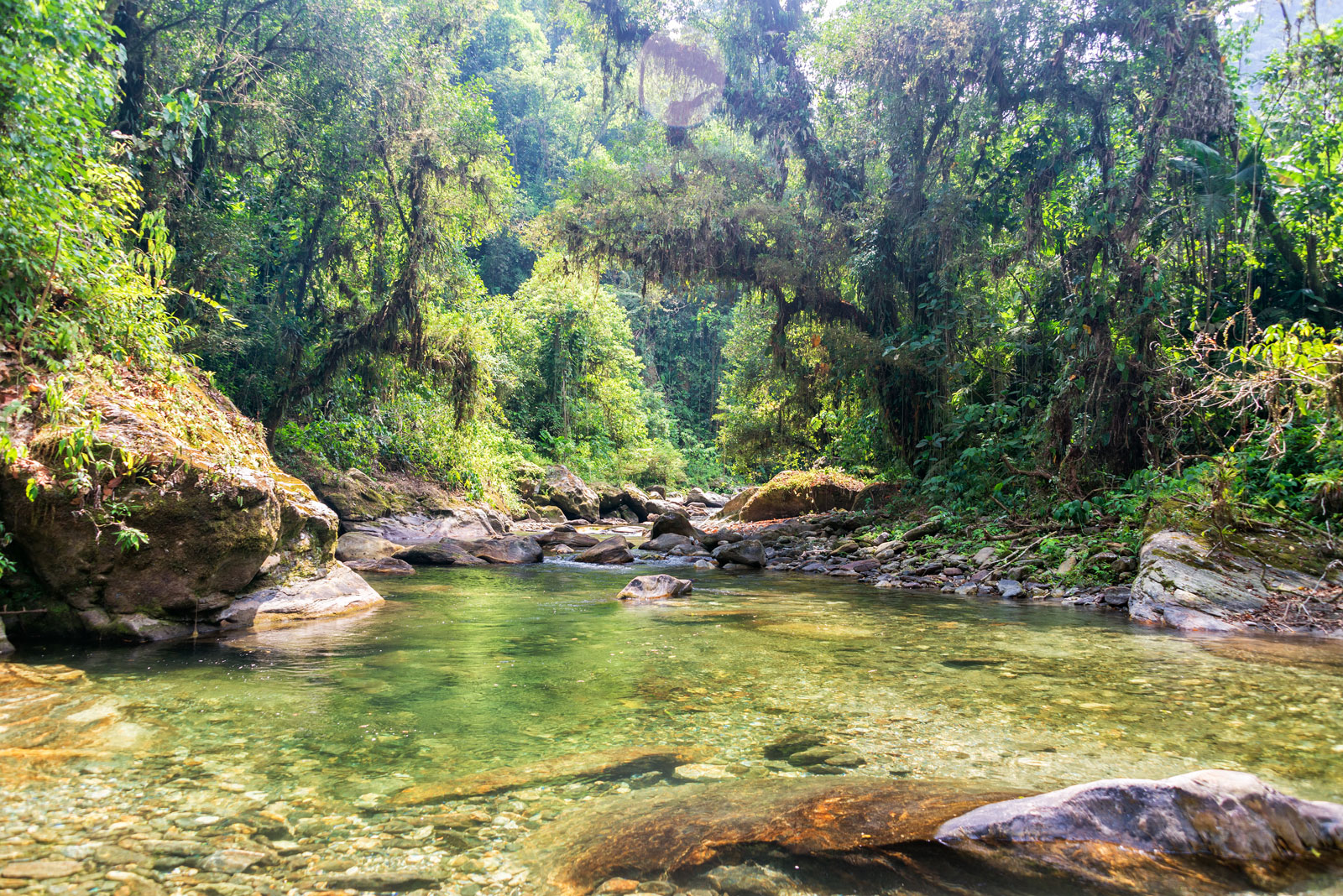 river-running-through-the-jungle-in-the-snsm-in-columbia